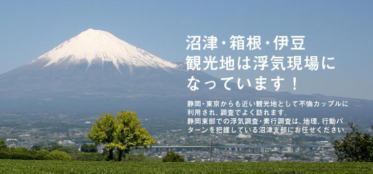 静岡・東京からも近い観光地として不倫カップルに利用され、調査でよく訪れます。 静岡東部での浮気調査・素行調査は、地理、行動パターンを把握している沼津支部にお任せください。